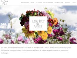 Bio Fleur de Soleil - Création et réalisation arborescencia.net